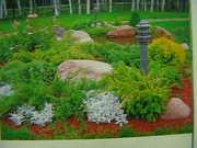 Озеленение,  благоустройство
