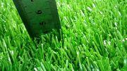 Искусственный газон ( трава)